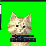 Animaze-facerig210211-12
