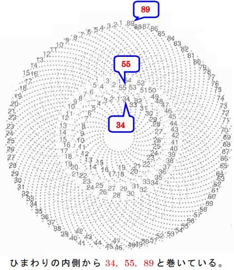 Fibonacci180728-6