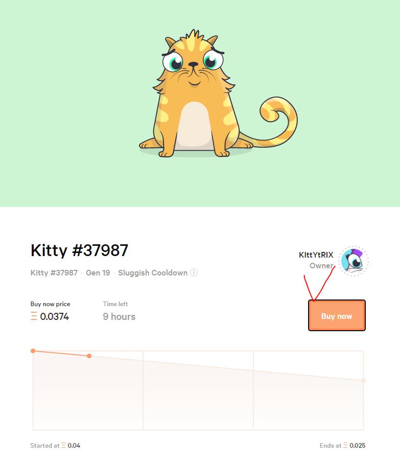 cat-171206-8