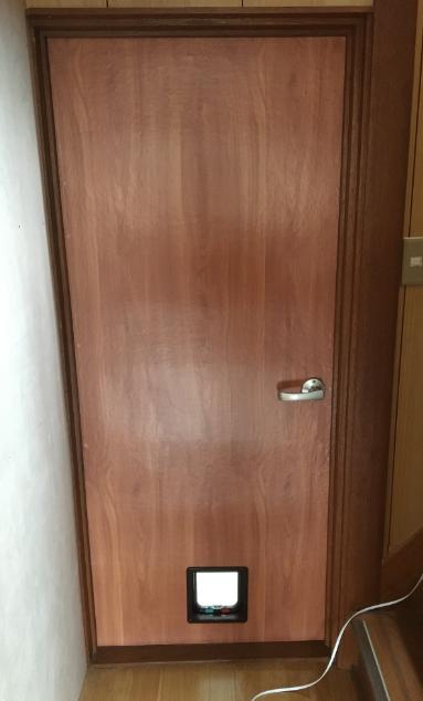 cat-door200207-20