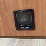 cat-door200207-21