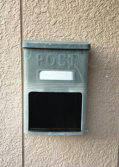 cat-post191209-02