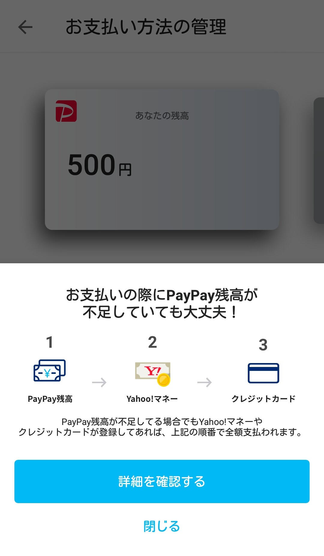 paypay1811124-4